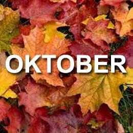 Erbjudande oktober månad